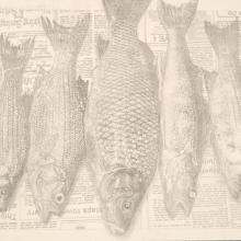 <a href='http://collection.spencerart.ku.edu/eMuseumPlus?service=ExternalInterface&module=collection&objectId=25993&viewType=detailView' target='_blank'><i>Five Fish Diptych (detail)</i> by Martin Fan Cheng</a>