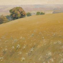 <a href='https://spencerartapps.ku.edu/collection-search#/object/18396' target='_blank'><i>Daisy Field, [west KU campus]</i> by William Alexander Griffith</a>